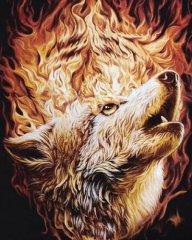 Feuer Wolf